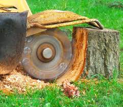 Kelley Tree Stump Grinding
