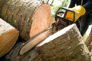 Tulsa #1 Tree Removal Company