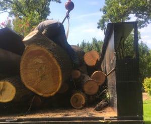 Tulsa's #1 Tree Service & Removal Company