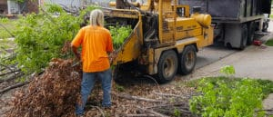 Tulsa Top Tree Service Company 1498x642