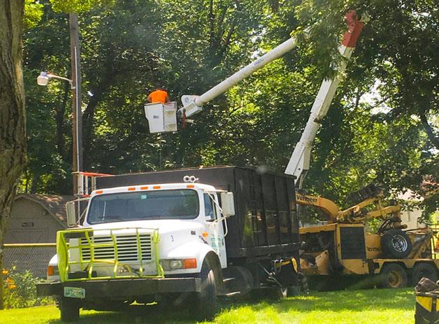 Tulsa's #1 Tree Service Company